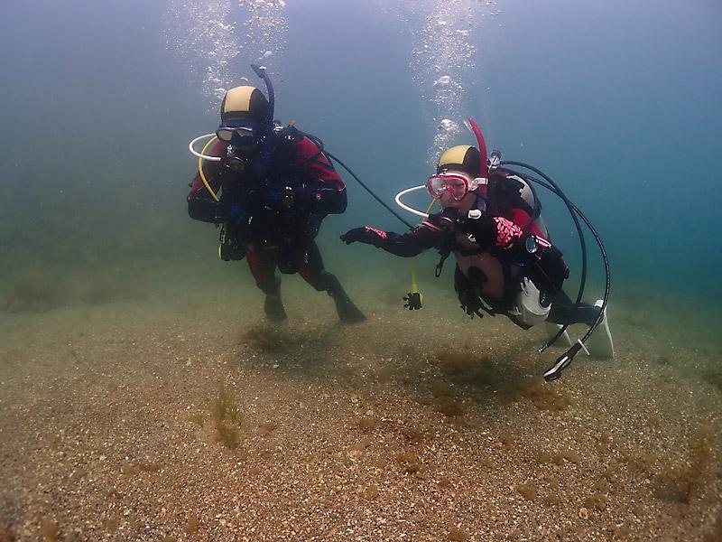 ダイビングで重要なスキル中性浮力の基本「フィンピボット」の練習風景