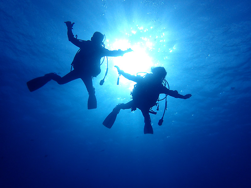 ダイビング重要スキル中性浮力とフィンキック