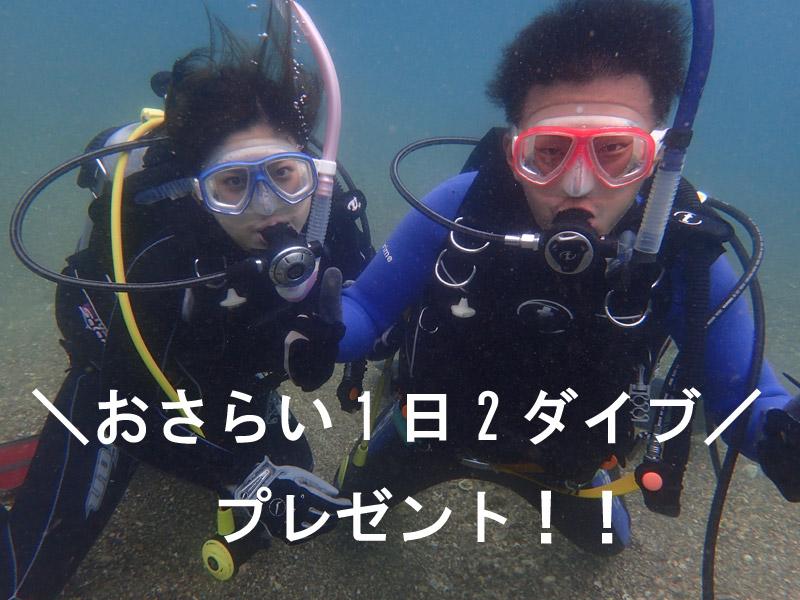 和歌山県でダイビングを確実に上手になる!