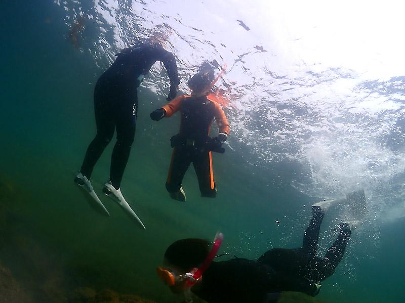 和歌山県田辺・南紀白浜で自由に泳げるスーパー体験ダイビング