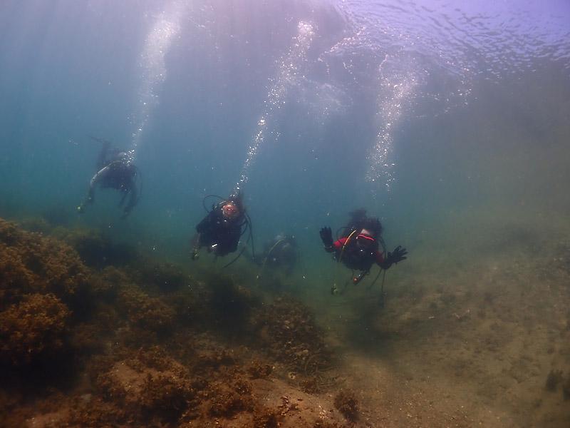 和歌山県田辺市・南紀白浜で体験ダイビング